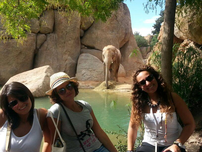 Students during one of our activity on the BIOPARC